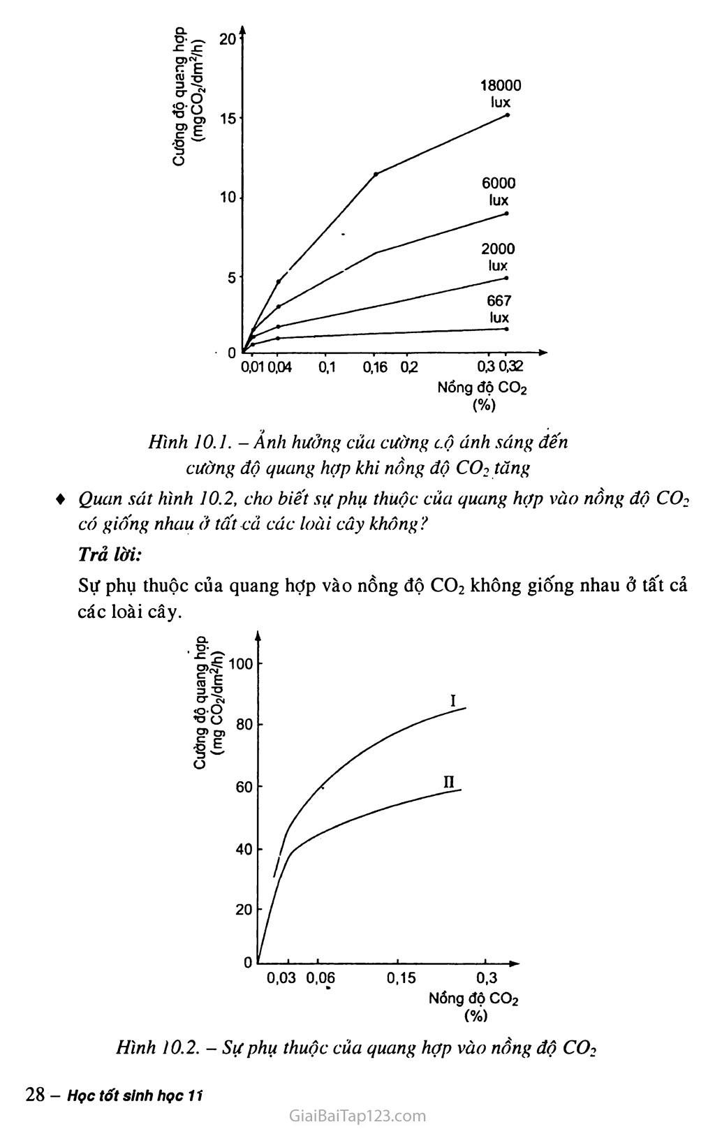 Bài 10. Ảnh hưởng của các nhân tố ngoại cảnh đến quang hợp trang 2