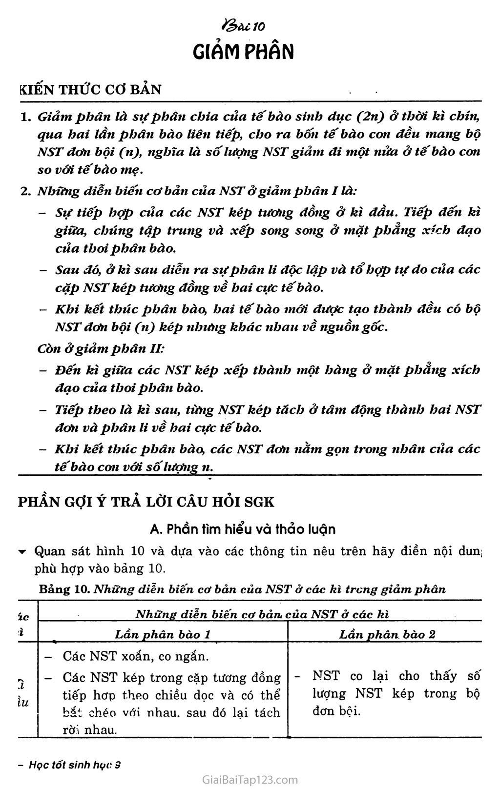 Bài 10. Giảm phân trang 1
