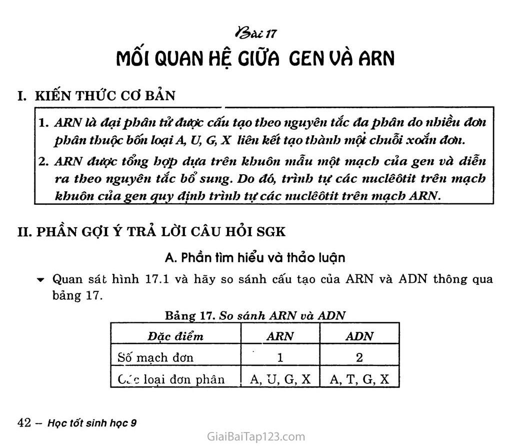 Bài 17. Mối quan hệ giữa gen và ARN trang 1