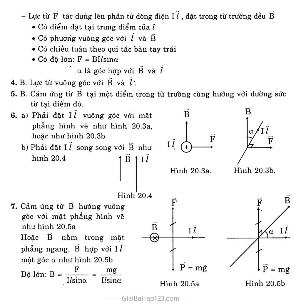 Bài 20: Lực từ. Cảm ứng từ trang 3