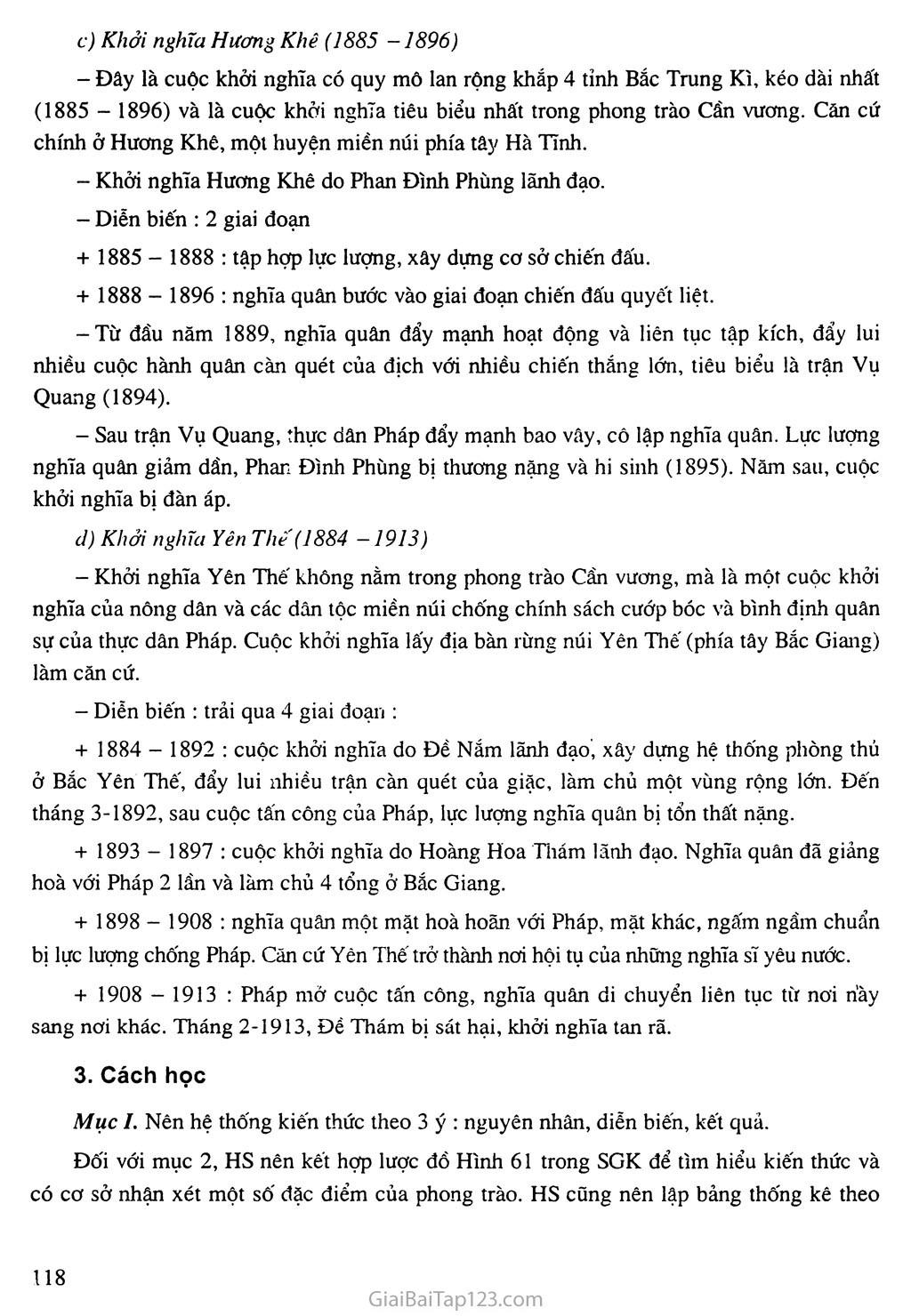 Bài 21: Phong trào yêu nước, chống thực dân Pháp của nhân dân Việt Nam trong những năm cuối thế XIX trang 3