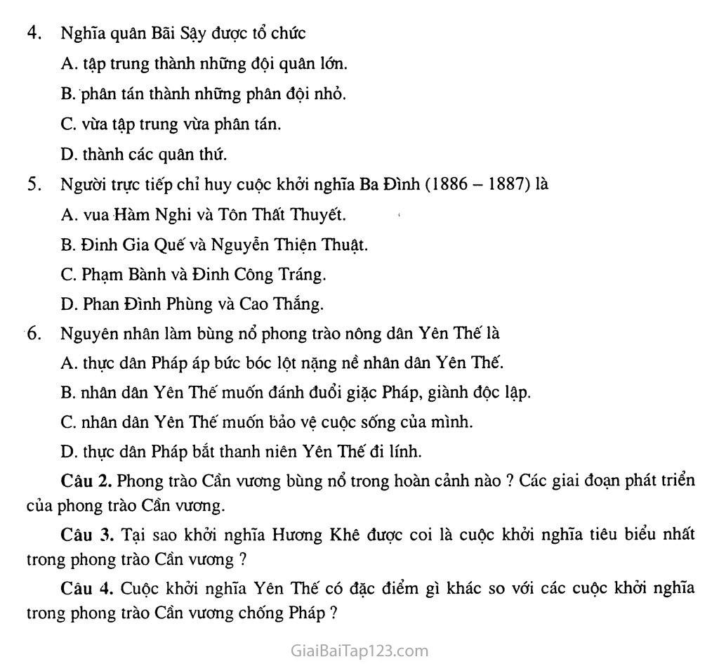 Bài 21: Phong trào yêu nước, chống thực dân Pháp của nhân dân Việt Nam trong những năm cuối thế XIX trang 7