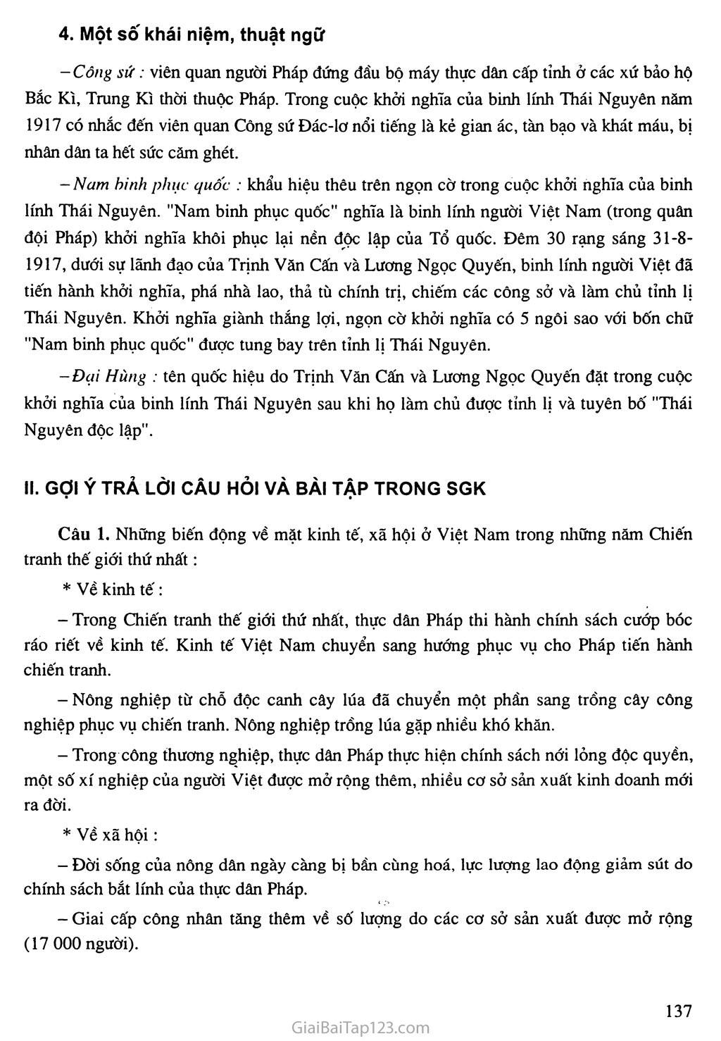 Bài 24: Việt Nam trong những năm chiến tranh thế giới thứ nhất (1914 - 1918) trang 5