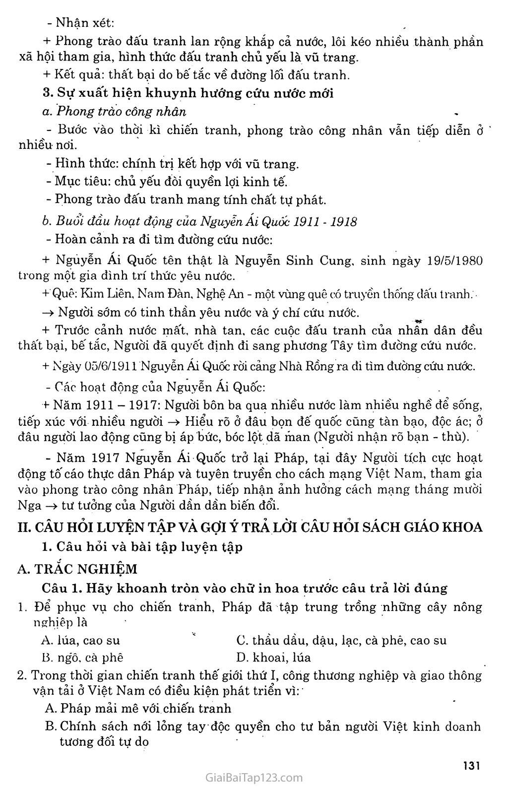 Bài 24: Việt Nam trong những năm chiến tranh thế giới thứ nhất (1914 - 1918) trang 3