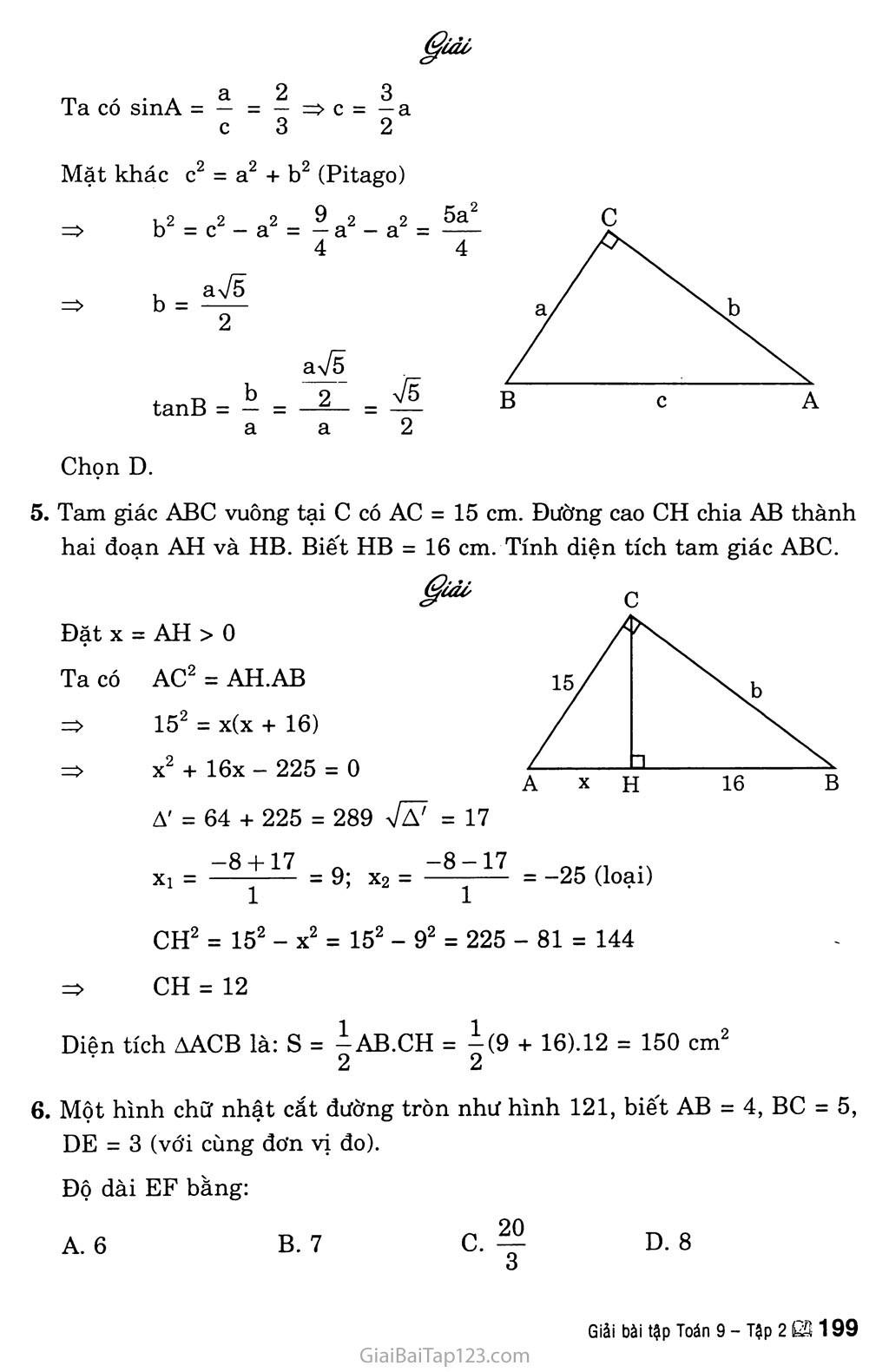 Bài tập ôn cuối năm trang 13