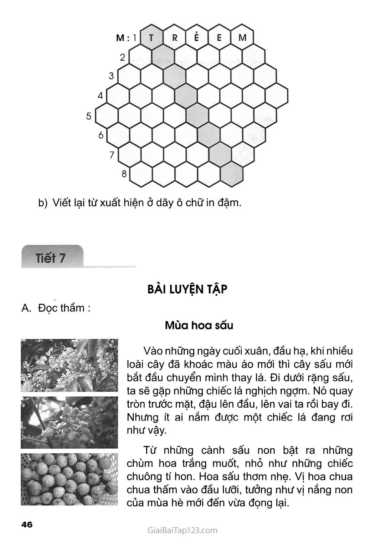 Tuần 9 - Ôn tập giữa học kì I trang 8