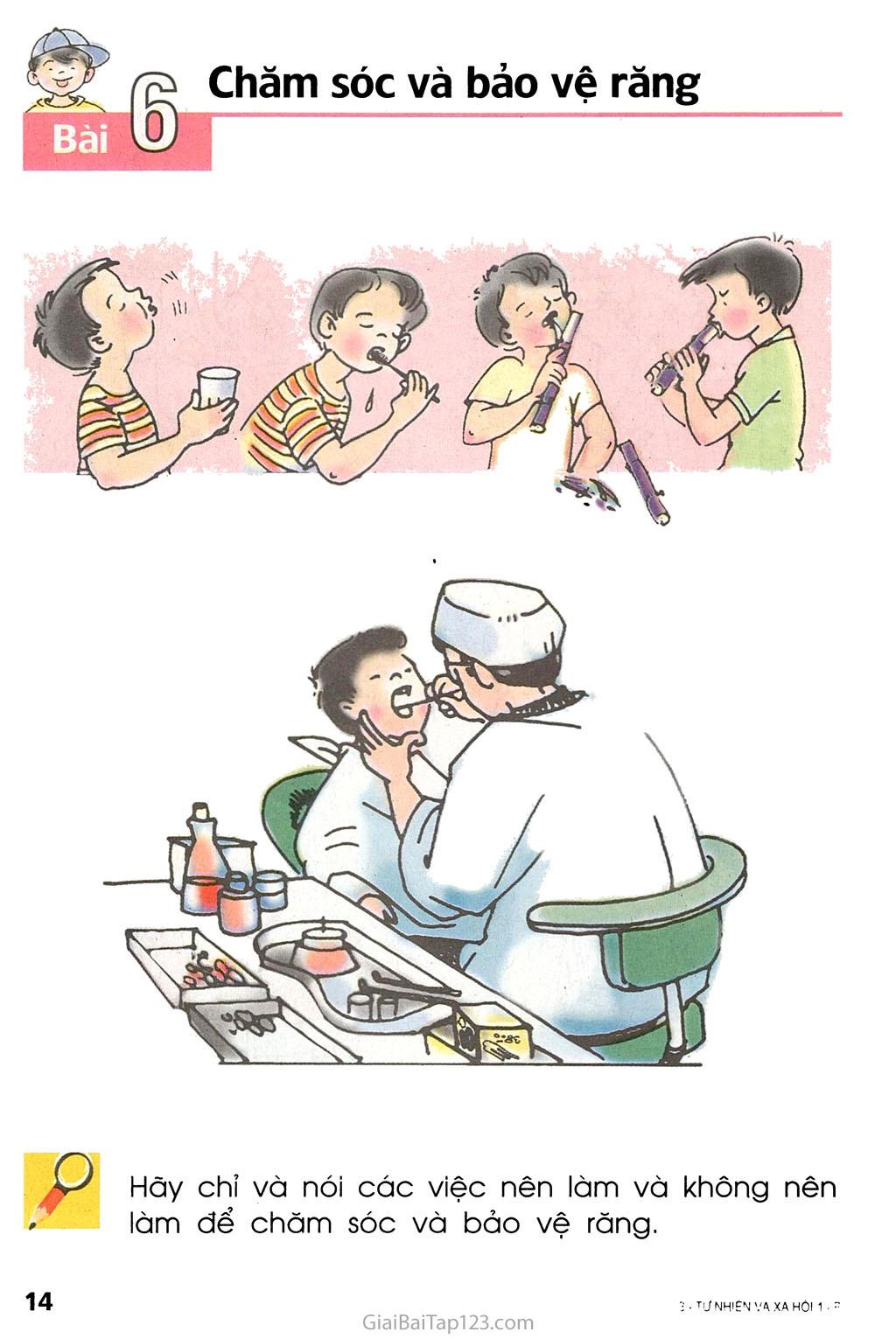 Bài 6. Chăm sóc và bảo vệ răng trang 1