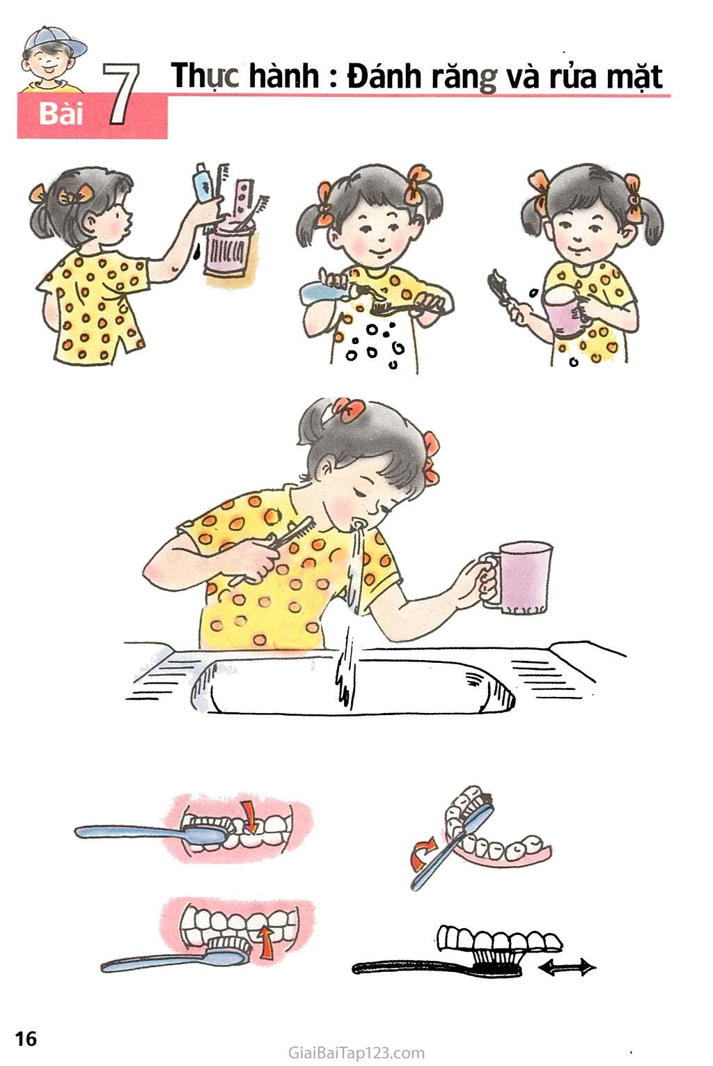 Bài 7. Thực hành: Đánh răng và rửa mặt trang 1