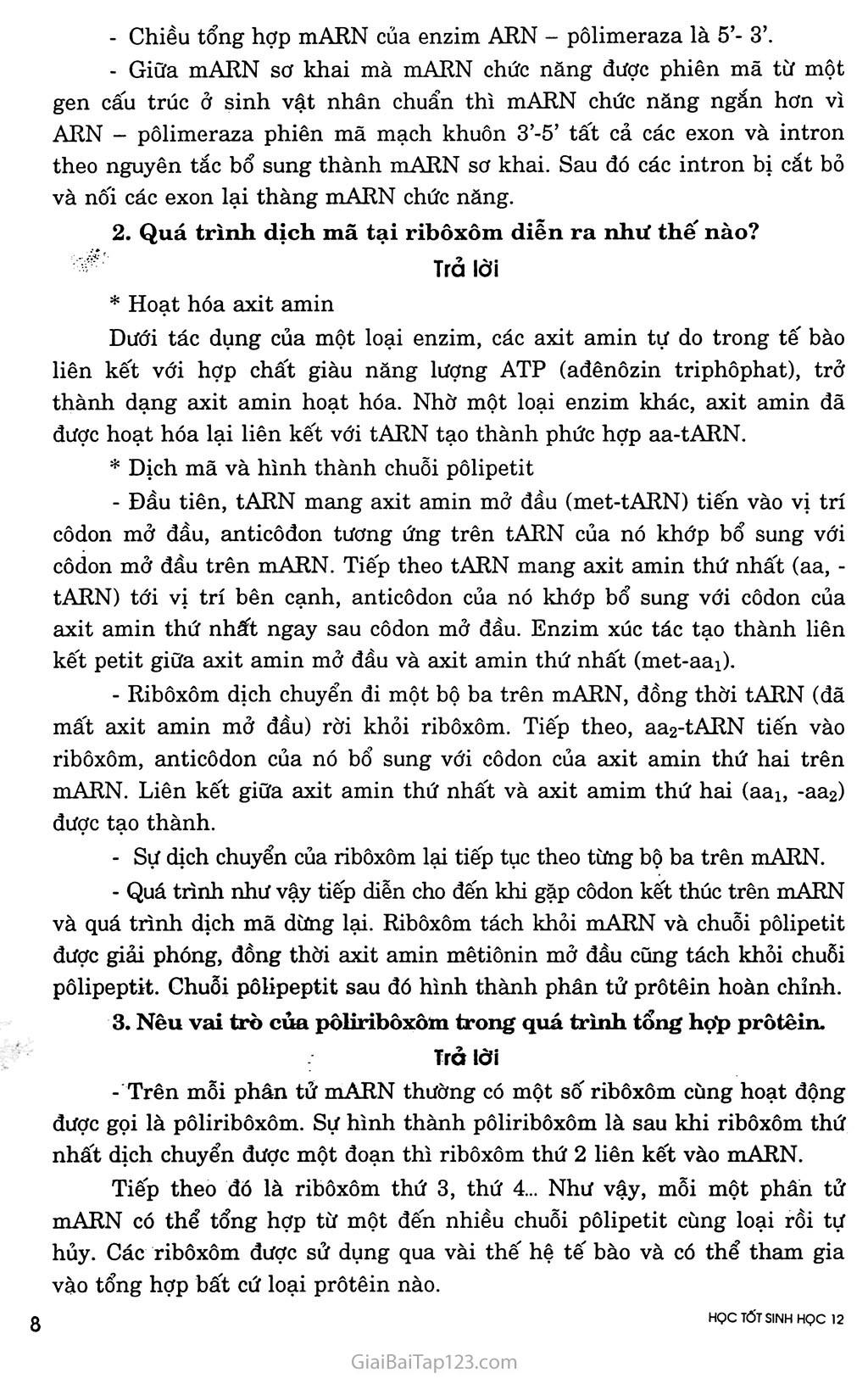 Bài 2. Phiên mã và dịch mã trang 2