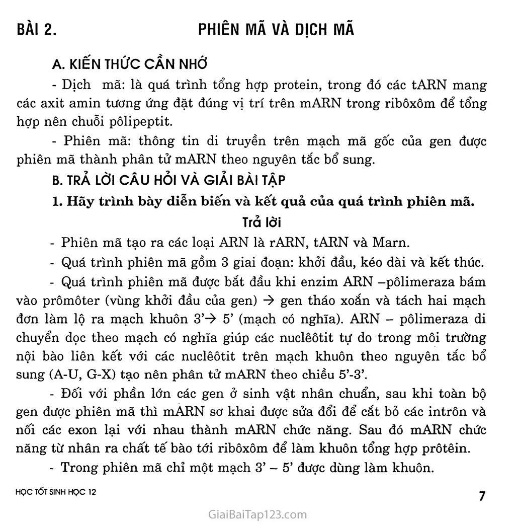 Bài 2. Phiên mã và dịch mã trang 1
